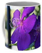 Passion Purple Coffee Mug