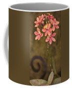 Passionate Pink Coffee Mug