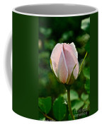Pastel Rose Petals Coffee Mug