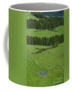 Pastures In Azores Islands Coffee Mug
