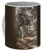 Path Along The Fence Coffee Mug