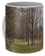 Path Of The Trees Coffee Mug