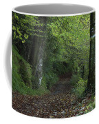 Path Through The Woods Inistioge Coffee Mug