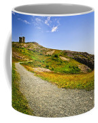 Path To Cabot Tower On Signal Hill Coffee Mug by Elena Elisseeva