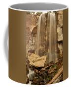 Paulina Falls Cascade Coffee Mug