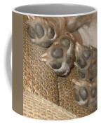 Paws Coffee Mug