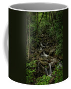 Peaceful Cascade Coffee Mug