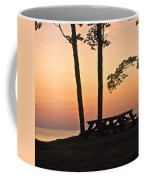 Peaceful Evening Picnic 7109 Coffee Mug
