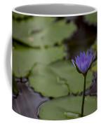 Peaceful Waterlily Coffee Mug