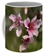 Peach Blossom Clusters Coffee Mug
