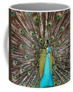 Peacock Plumage Feathers Coffee Mug