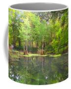 Peacock Springs State Park Coffee Mug