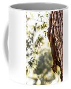 Peanut Run Coffee Mug