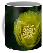 Pear Cactus Flower Coffee Mug