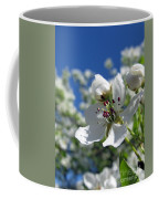 Pear In Bloom Coffee Mug