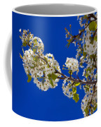 Pear Spring Coffee Mug by Chad Dutson