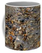 Pebbles And Shells By The Sea Shore Coffee Mug