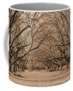 Pecan Orchard Coffee Mug