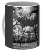 Pecan Trees Coffee Mug