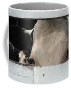 Peek-a-boo Cow Coffee Mug