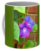 Peek-a-boo Morning Glories Coffee Mug