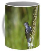 Peekaboo Birdie  Coffee Mug