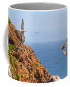 Pelicans Off The Point Coffee Mug
