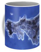 Pelomyxa Carolinensis Lm Coffee Mug