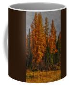 Pembina  Coffee Mug