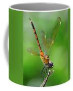 Pennant Dragonfly Obilisking Coffee Mug