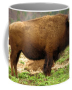Pennsylvania Bison Coffee Mug