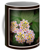 Penta Coffee Mug