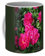 Peony Named Karl Rosenfield Coffee Mug