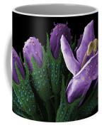 Sem Of Peppermint Bud Coffee Mug
