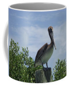 Perched Pelican Coffee Mug