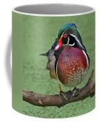 Perched Wood Duck Coffee Mug
