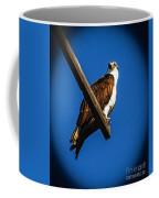Perching Osprey Coffee Mug