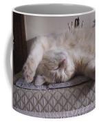 Percy Cat Sleep Stylist Coffee Mug