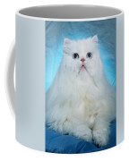 Persian Beauty 1 Coffee Mug
