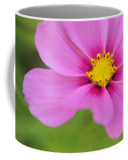 Petaline - P01a Coffee Mug by Variance Collections