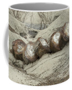 Petrified Forest 1 Coffee Mug