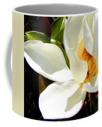 Photo For Sydneys Magnolia Painting Coffee Mug