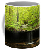 Pickle Spring In Missouri Coffee Mug