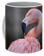 Picky Coffee Mug