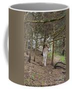 Piebald Coffee Mug