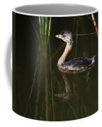 Pied-billed Grebe In The Reeds Coffee Mug