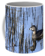 Pied-billed Grebe, Montreal Botanical Coffee Mug