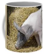 Piggy Piggy In The Straw Coffee Mug