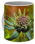Pinchshin Bud Coffee Mug