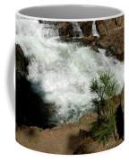 Pine And Falls Glen Alpine Falls Coffee Mug